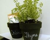mini herb pots