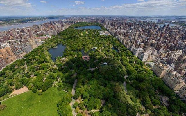 Un cuore verde al centro della metropoli - Central Park a Manhattan Central Park è un'oasi per gli abitanti di Manhattan che abitano nei grattacieli circostanti, ed è uno dei parchi cittadini più conosciuti del mondo, grazie anche alle sue comparse in numerosi film e