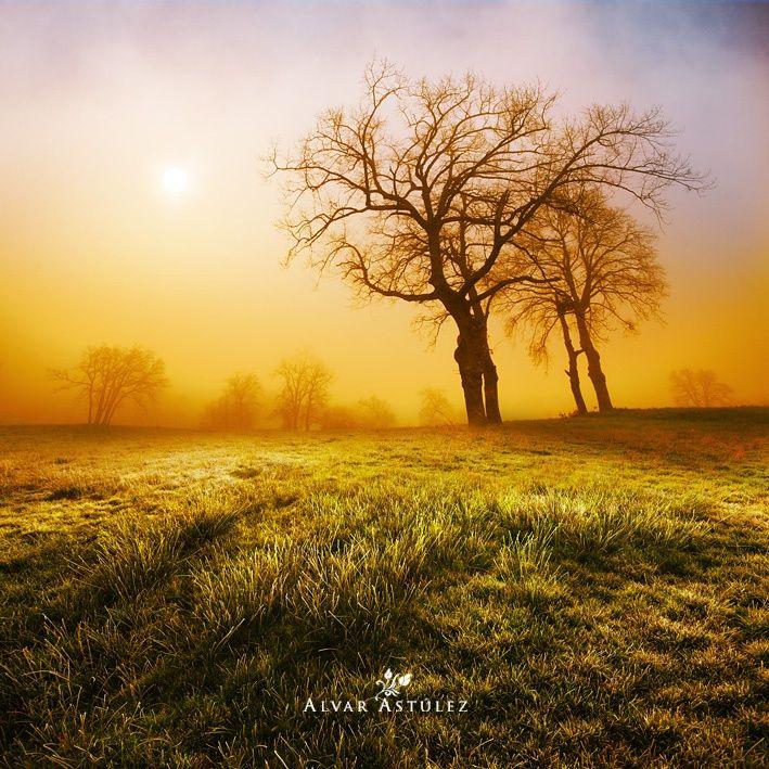 Una mañana de primavera by Alvar Astúlez on 500px
