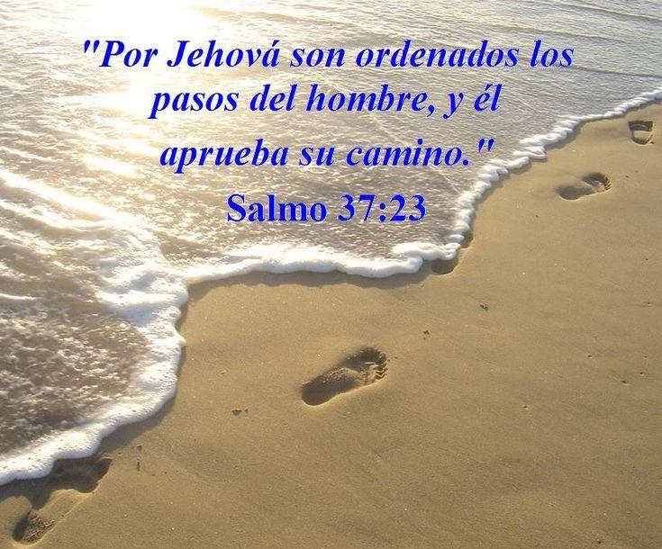 Versiculos Biblicos De Promesas De Dios: Dios Ordena Mis Pasos