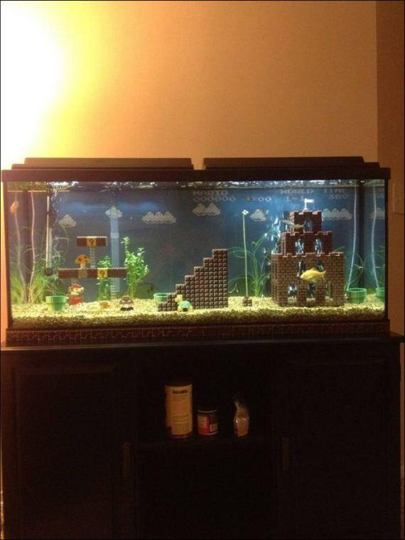1000 images about turt tank ideas on pinterest betta for Fish tank turtles