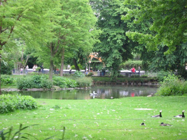 Simple Der K lner Zoo Cologne Germany