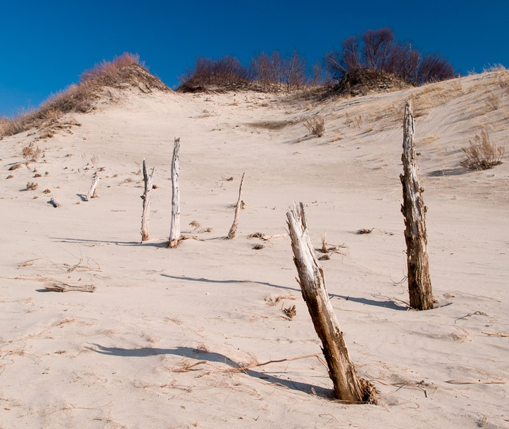 Sand dunes at Sandbanks Provincial Park, Ontario I practically lived here in the summer as a child.