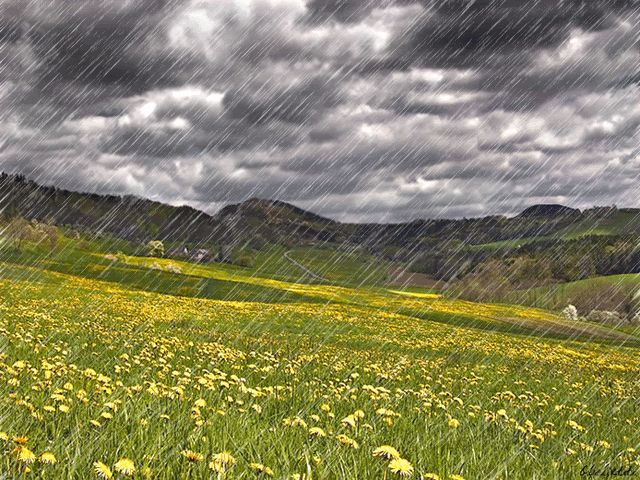 Me encanta la lluvia, me recarga de energía :) Como me gusta que me pasen cosas bonitas… pequeñas cosas bonitas, como las gotitas de lluvia… BUENOS DIAS MUNDO :)