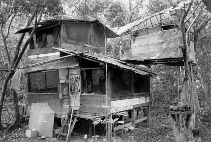 9 Best Taylor camp kauai images | Kauai, Camping, 1970s hippie