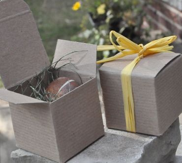 in small gift boxes new adorable plant a memory wedding favors