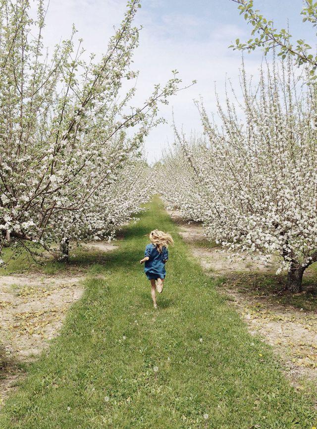 Michigan spring
