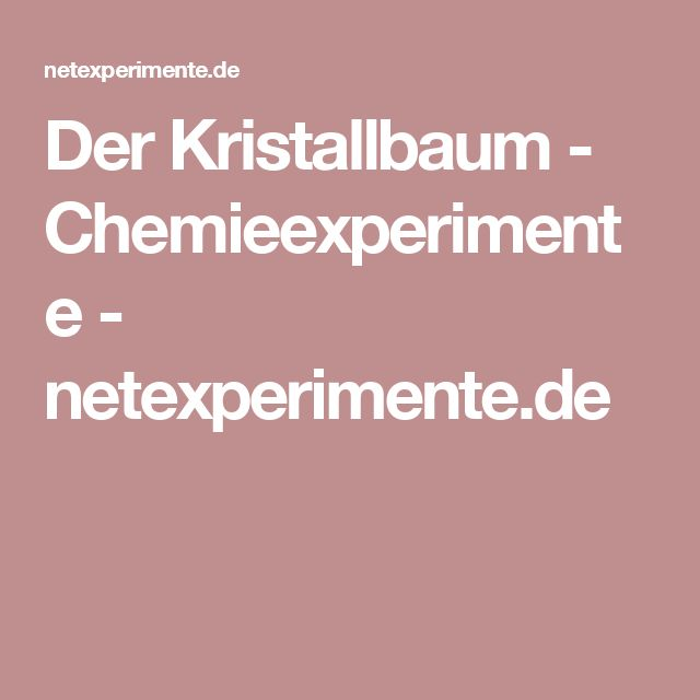 Der Kristallbaum - Chemieexperimente - netexperimente.de