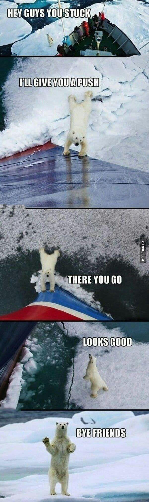 Good guy polar bear - 9GAG