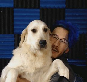 Markiplier & Chica: A Celebration Of History's Greatest Love Story ...