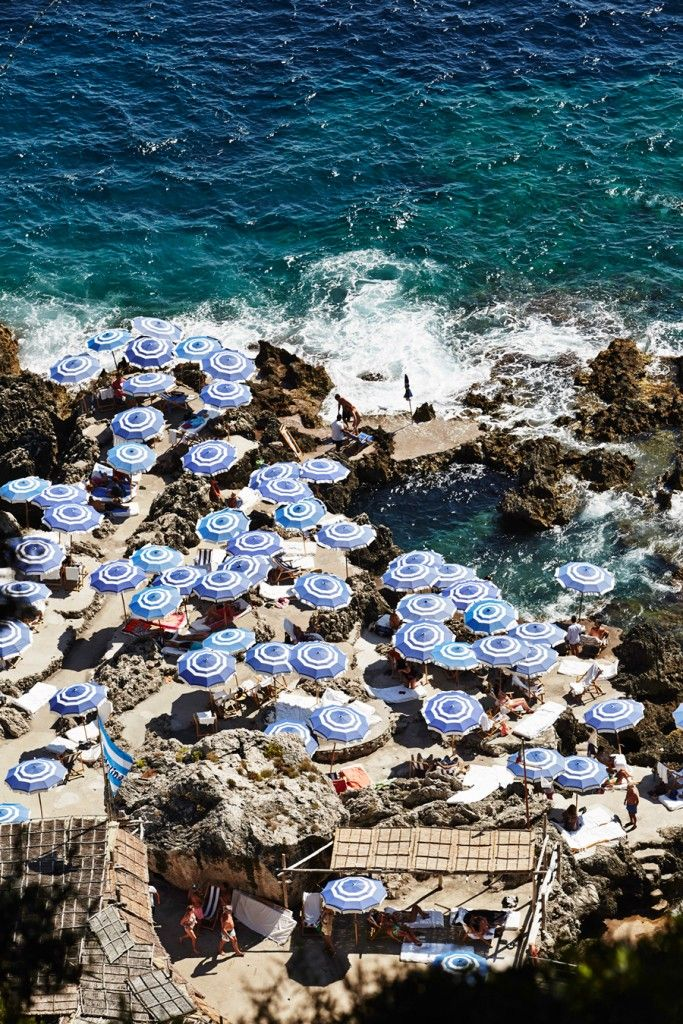 CAPRI   photo by andrewarthurphoto.com