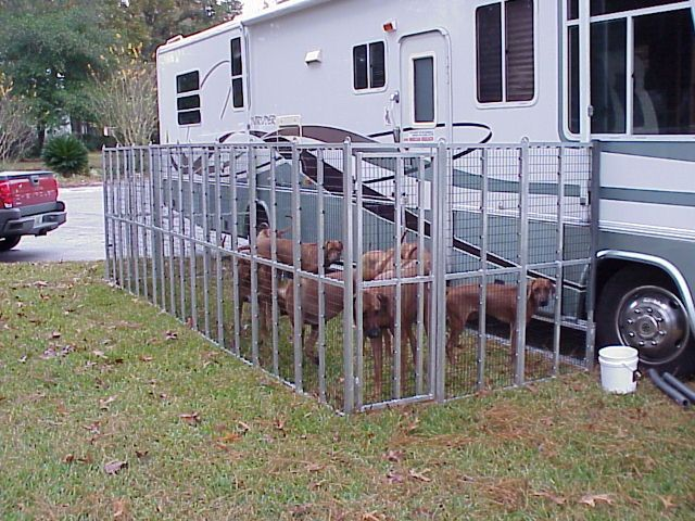 metal fencing rv dog run - Google Search