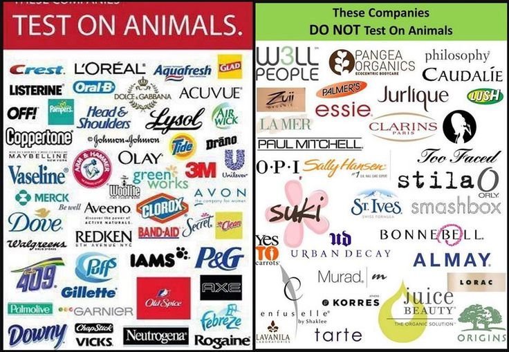 Most major companies still perform cruel tests on animals. Do your homework on the products you buy to make sure that they are not tested on animals. Some products such as St. Ives and White Rain, which are not terribly expensive, say right on the bottle that they DO NOT, test on animals.