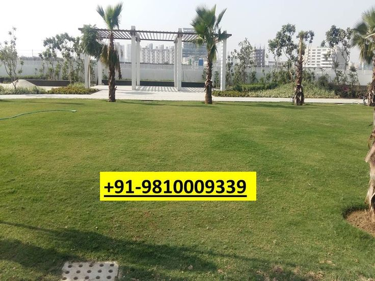 Residential plots for sale in Gurgaon || 9810009339
