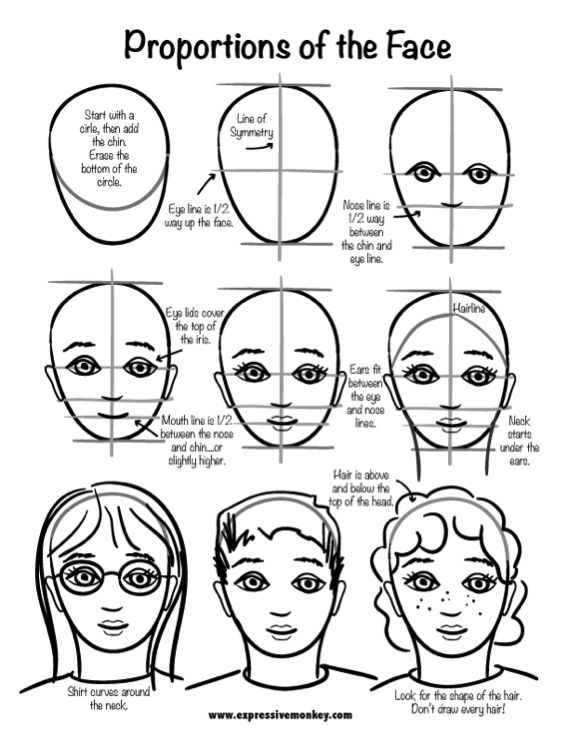 proportion face drawing elementary - Google Search