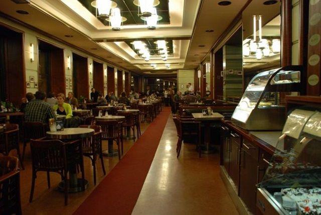 유럽에서 가장 아름다운 카페 14곳 - ㅍㅍㅅㅅ