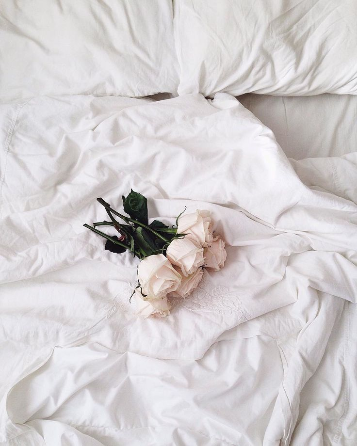 Pause Douceur Fleurs Roses Rose Blanc White Pink Instant Photography Photographie Inspirationfleur White Aesthetic Aesthetic Colors Aesthetic Photo