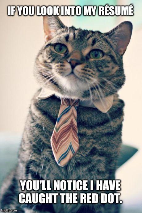 impressive resume mister tinkles :3