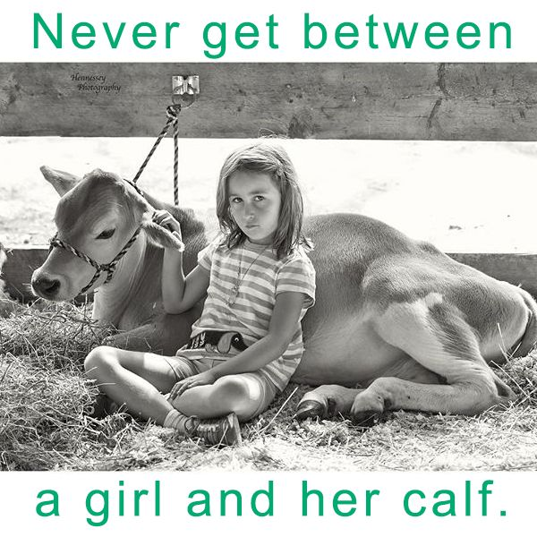 Never get between a girl and her calf. [Original photo captured by @HennesseyPhoto]