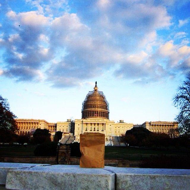 Washington DC. #averyfrankadventure