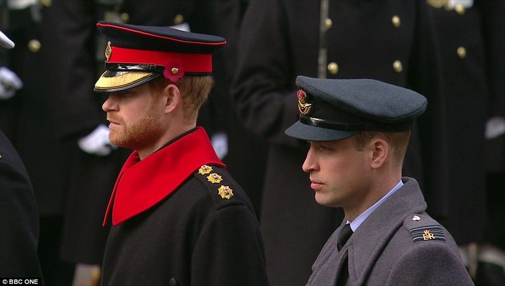 Princes William and Harry also laid wreaths during services on Whitehall as Britain honoured its war dead