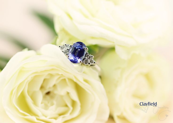 Beautiful sapphire ring featuring six diamonds by Clayfield Jewellery in Nundah Village, North Brisbane