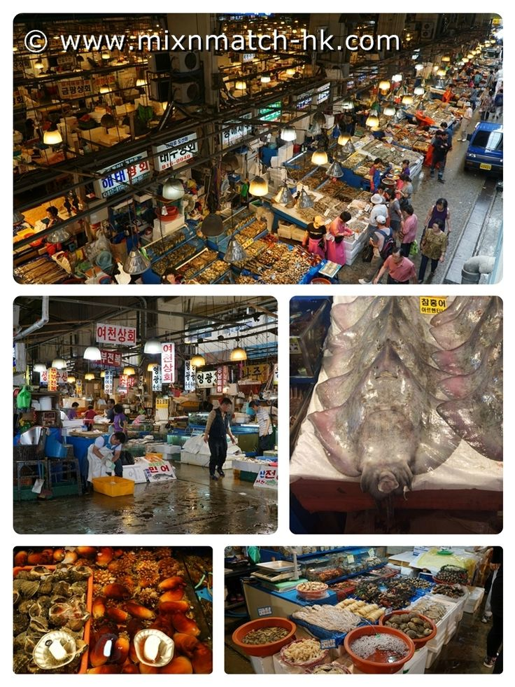 Taste of Seoul | Noryangjin Fish Market is a seafood heaven in Seoul where you can pick out your fresh, live seafood and have it prepared into sashimi and hot pot.