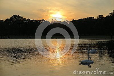 Lake and sunset in Hyde Park, London.