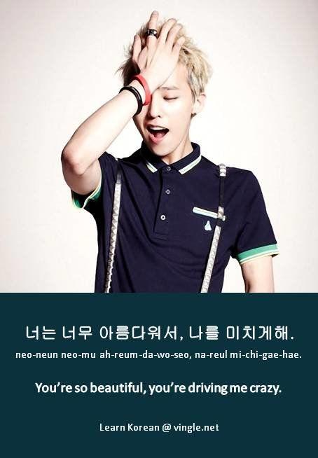 Korean Language| Tumblr| You're so beautiful, you're driving me crazy.