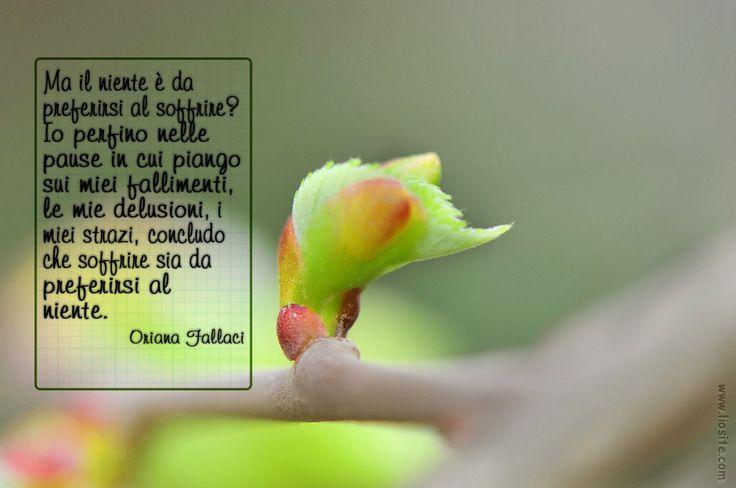 #Oriana Fallaci - Ma il niente ...