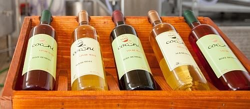 """La Targul de toamna de la Hanul Manuc veti face cunostiita cu entuziastii """"parinti"""" ai brandului de vinuri COCONI: """"Suntem o podgorie mica, dar voinica si facem vinuri atent alese si combinate. Strugurii nostrii cresc pe un deal cu soare, cu priveliste la lac. In vremurile de demult, pe locurile acestea se jucau Coconii Domnesti. Din domeniile lor de atunci nu a mai ramas decat numele si manastirea Taricenilor situata la 10 minute de podgorie."""