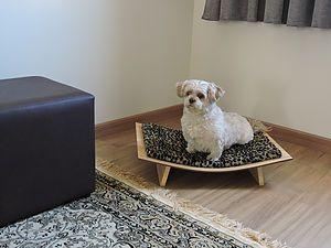 cama para pet, luxo , para cão e gato,divã,poltrona,sofá
