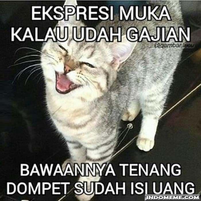 Ekspresi muka kalau udah gajian - #GambarLucu #MemeLucu - http://www.indomeme.com/meme/ekspresi-muka-kalau-udah-gajian/