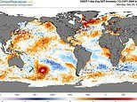 Red blob suddenly appears on heat maps off the coast of New Zealand