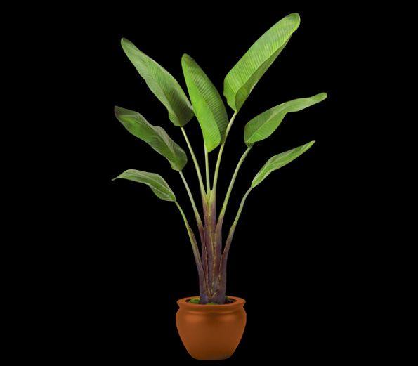 BIRD OF PARADISE - faux tropical plant