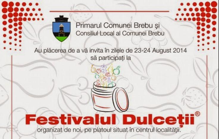 Something of a diary: Week-end de festival (23-24 august 2014) - Festiva...