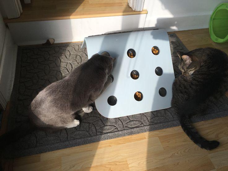 IKEA hackDIY Food Puzzle for Cats! Diy cat toys, Hacks