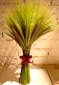 Para as noivas que querem inovar, sair do comum, o trigo está em alta! O trigo é significado de prosperidade e fertilidade, ideal para quem está começando uma vida a dois. Então porque não apostar nele para o seu casamento? Além de ser diferente e original, a planta também é mais barata e já se …