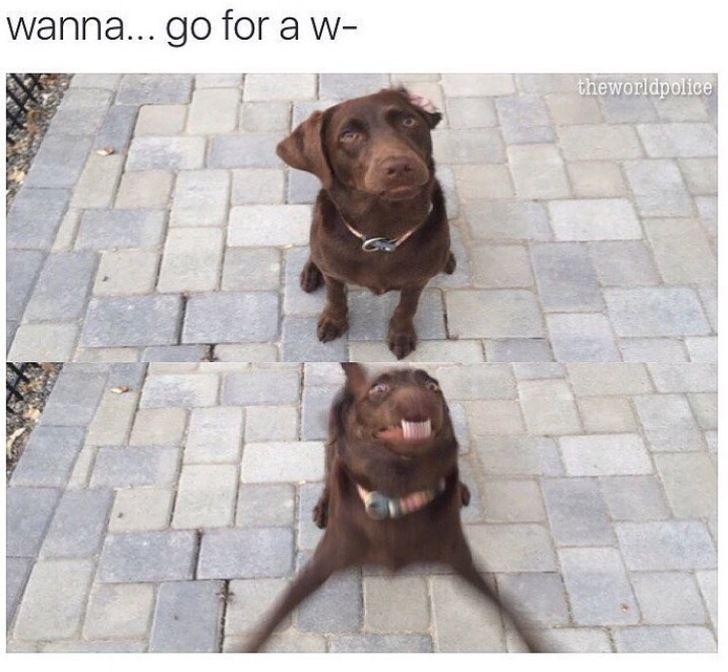 wanna-go-for-a-w