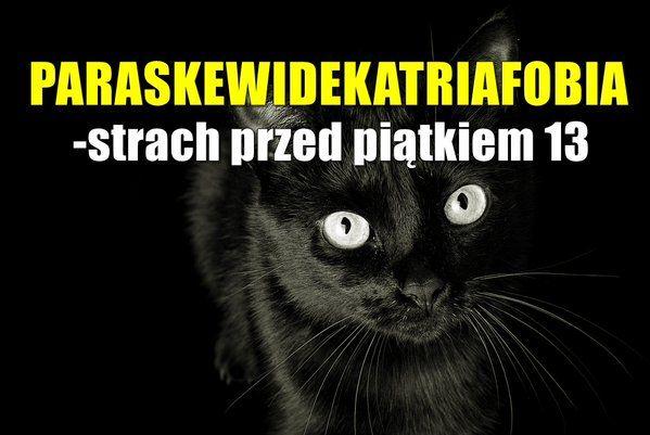 A czy Ty chorujesz na paraskewidekatriafobię?  #piątek13 #bydgoszcz #rusztylek #wyluzuj #cojapaczę