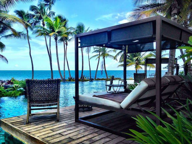 While relaxing by the pool at Dorado Beach, a Ritz-Carlton Reserve, admire the palm trees found throughout the resort, which date back to the Rockefeller era and were preserved during the resorts remodel.