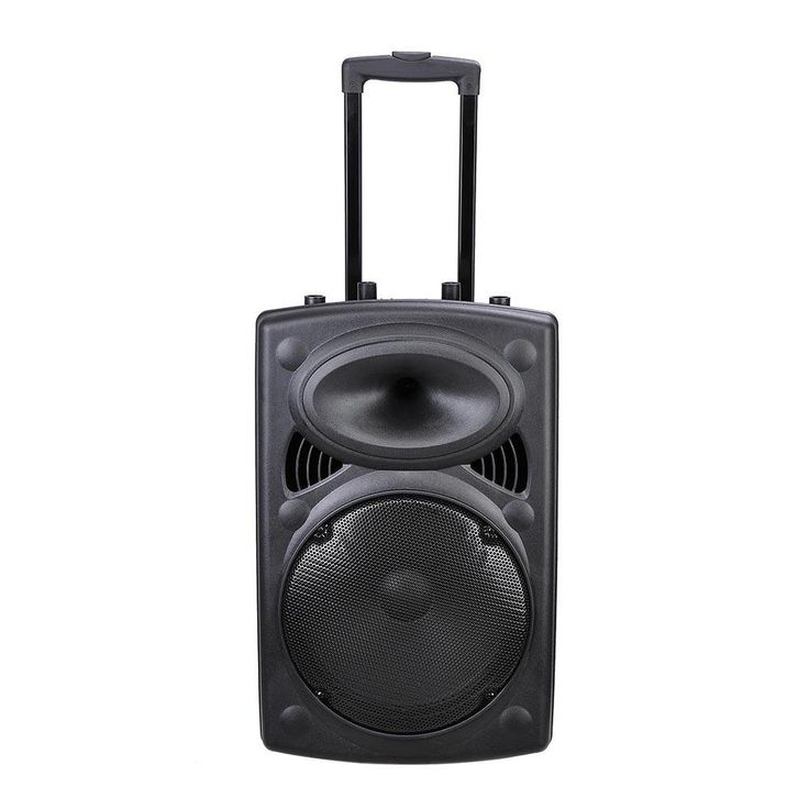 "12"" Portable Active PA Speaker w/ Microphone & Remote"