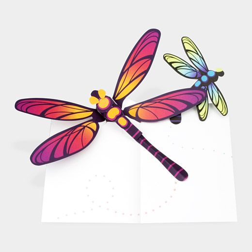 Pop-Up Dragonflies Note Cards by  Robert Sabuda for the MOMA shop.