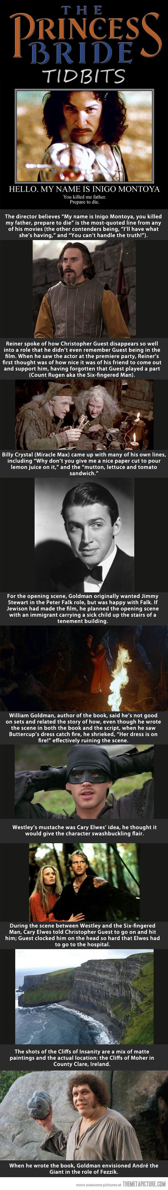 This is one of my favorite movies and most treasured childhood memories. This little consolidation of facts makes me very happy.