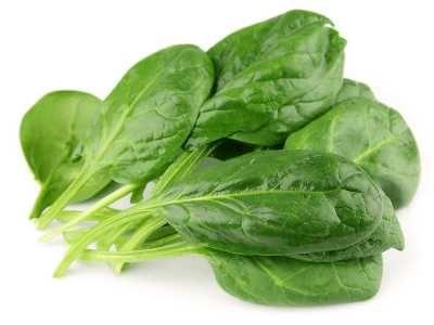 Daun Bayam - Berikut ini ada beragam khasiat atau manfaat daun bayam duri hijau maupun merah untuk kesehatan serta kecantikan rambut dan kulit tubuh.