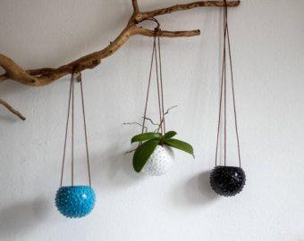 Hängende Wand saftigen Pflanzer / Blume Topf / von OlisCupboard