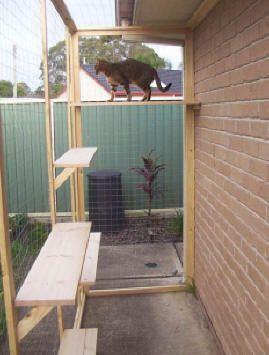 Cat Enclosures - Outdoor Cat Runs - Many Cat Enclosure Pictures