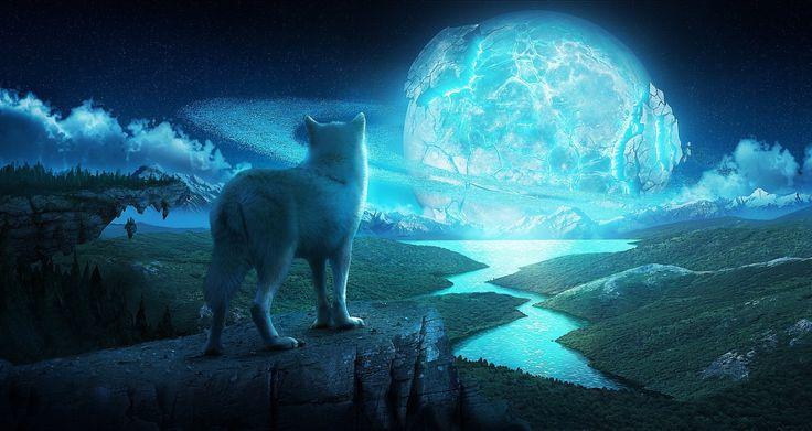 Animais Lobo  Paisagem River Magical Sol Planetscape Fantasia Papel de Parede