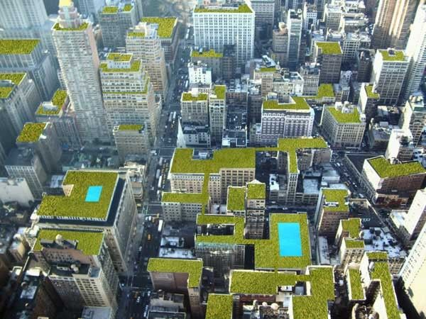 Architecture. Stunning Newyork Roof Gardens: Awesome Rooftop Gardens. Contemporary Rooftop Architecture, Amazing Roof Top Ideas Together Wit...