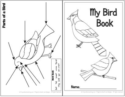 printable bird books for kids | ... and Projects – CreateForLess » Blog Archive » Bird Watching Book